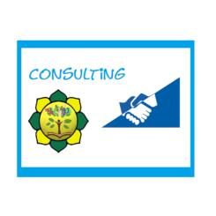 Attività plurale di promozione e consulting